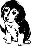 Beagle matrica 1
