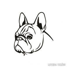 Francia bulldog matrica 8