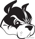 Boston terrier matrica 13