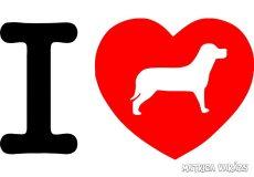 I Love kutya matrica