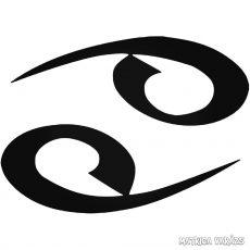 """Horoszkóp jel """"1"""" Autómatrica"""