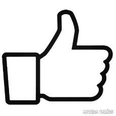 """Facebook Like """"1"""" Autómatrica"""