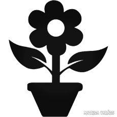 Cserepes virág Autómatrica