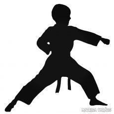 Karate kölyök matrica