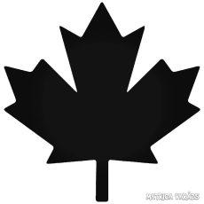Kanadai levél Autómatrica