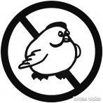 No FAT Chick - Autómatrica