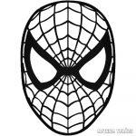 Spider-Man Autómatrica