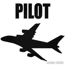 Repülőgép pilóta Autómatrica