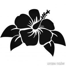 Leveles Orchidea Autómatrica