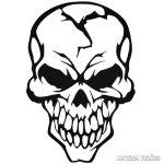 Betörtfejű koponya Autómatrica