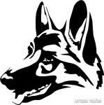 Németjuhász kutya matrica